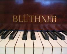 Bluthner pianos, one of Germany's top makers